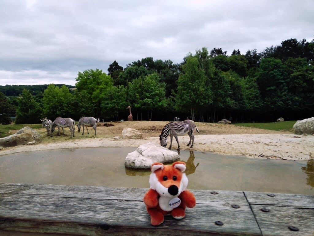 James Boond au zoo de Beauval