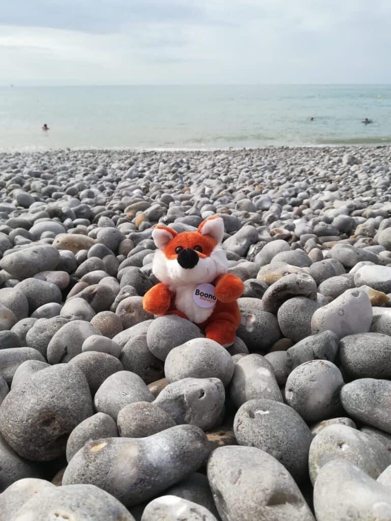 James Boond se détend sur la plage de Fécamp
